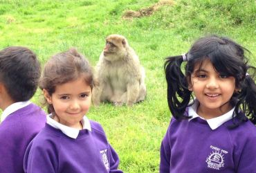 Year 1 and 2's trip to Monkey Forest