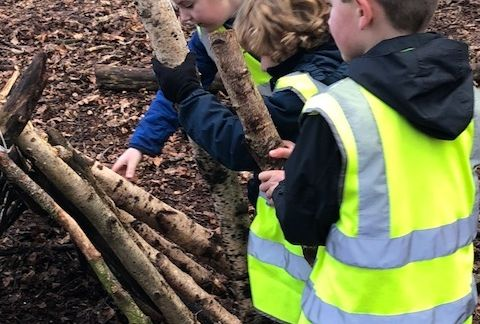 Year 2 Residential
