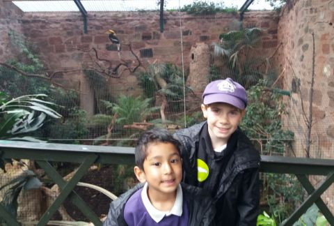 Little Monkeys visit the Zoo