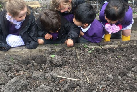 Proud of her Planting-Mad Pre-Prep