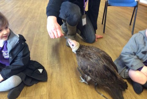 Feathery Friends Visit Pre-Prep