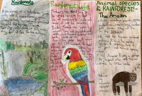 Our Year 6's: How They've Grown