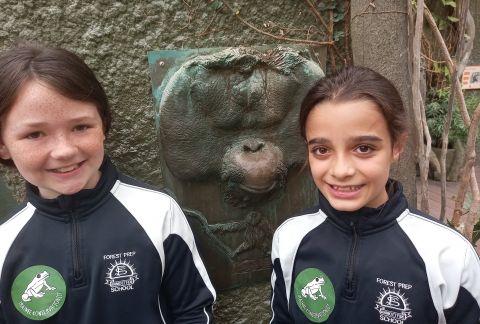 Monkeying Around: Chester Zoo