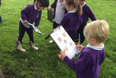 Kindergarten are Reception-Ready