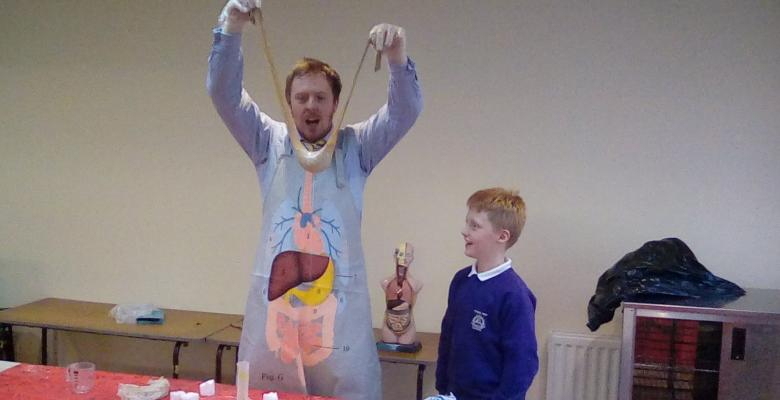 Year 4 study The Digestive System