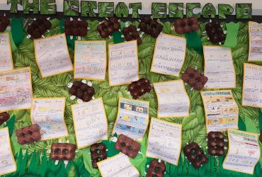 Year 5: Displays