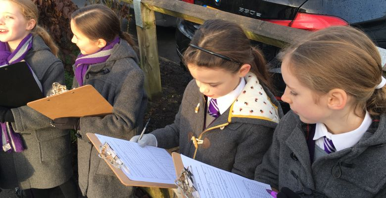 Traffic Observation - Year 5 Walk to Timperley